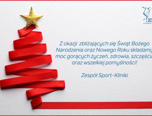 Wesołych Świąt orazSzcześliwego Nowego Roku